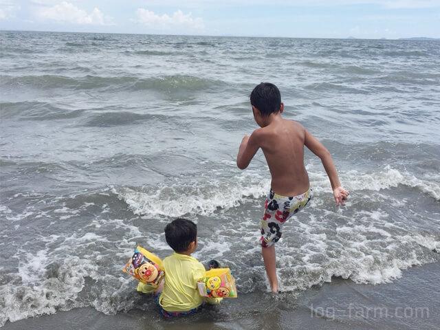 大淀海岸の海