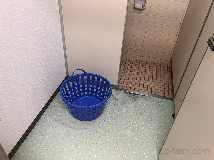 シャワールームの脱衣場