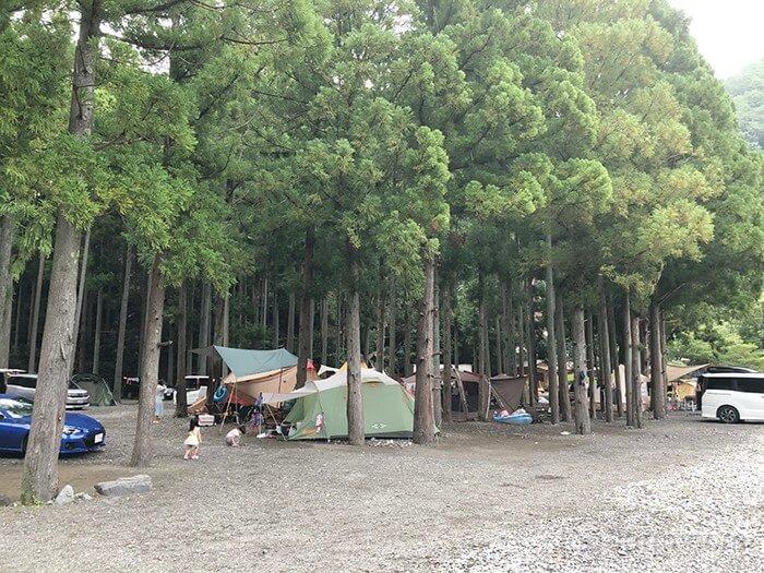 谷瀬つり橋オートキャンプ場の林間サイト