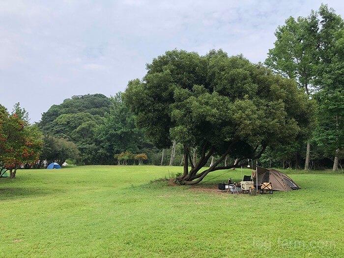 田の浦野営場でソロキャンプ