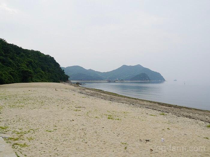 田の浦野営場前に広がる海と砂浜