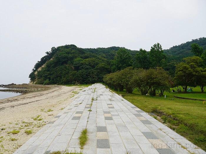 田の浦野営場と海の間の歩道