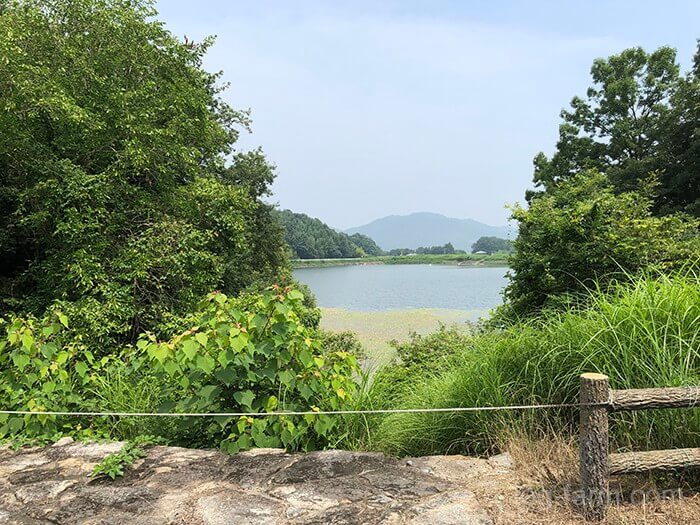 とらまる公園キャンプ場から見える池