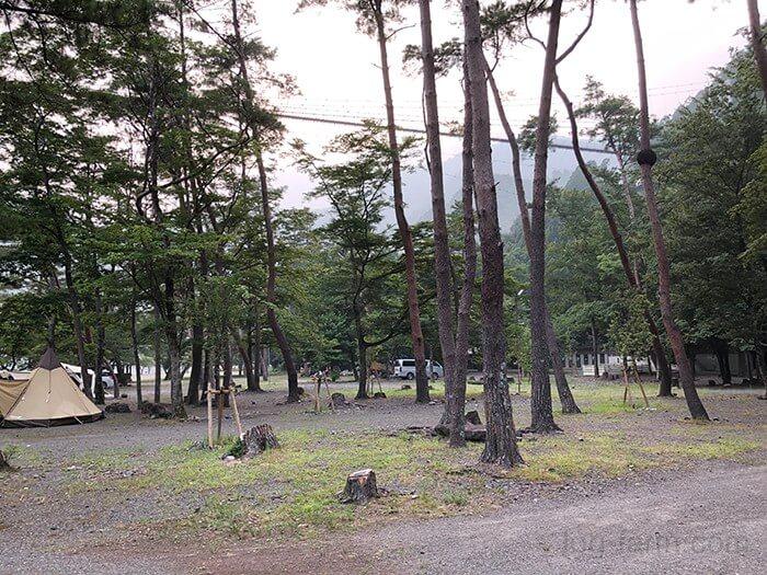 入口付近の林間サイト