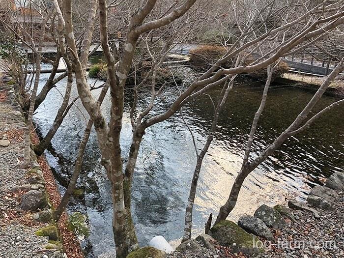荒滝キャンプ場の釣り堀