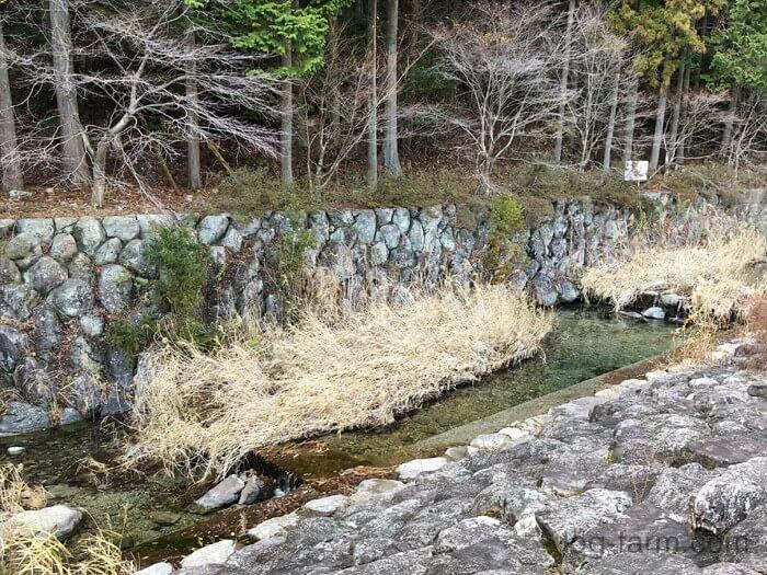 荒滝キャンプ場近くの川