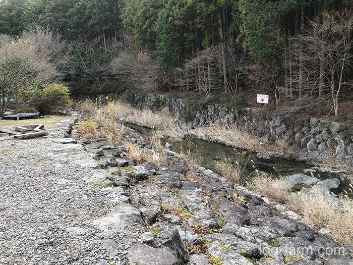 荒滝キャンプ場そばを流れる自然の川(庄司谷川)
