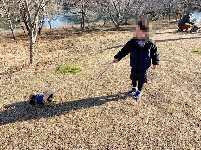 犬連れキャンプで散歩