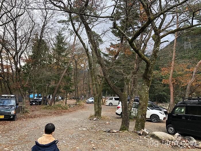 黄和田キャンプ場の林間サイト