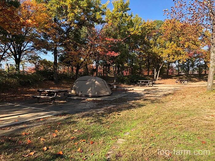 鶴見緑地キャンプ場の小サイト