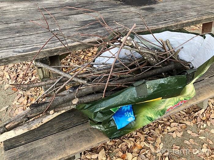 鶴見緑地キャンプ場で集めた薪