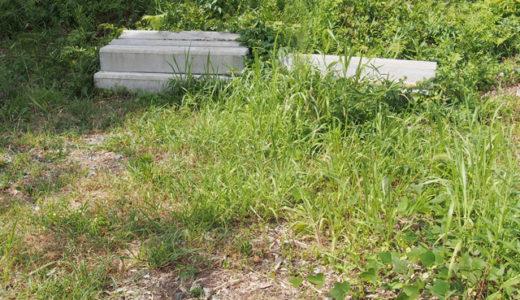 【空室対策のキホン】賃貸物件の雑草を除草剤や防草シートで対策