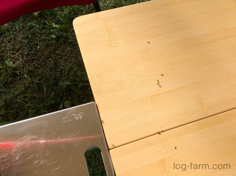 テーブルに小さい蟻